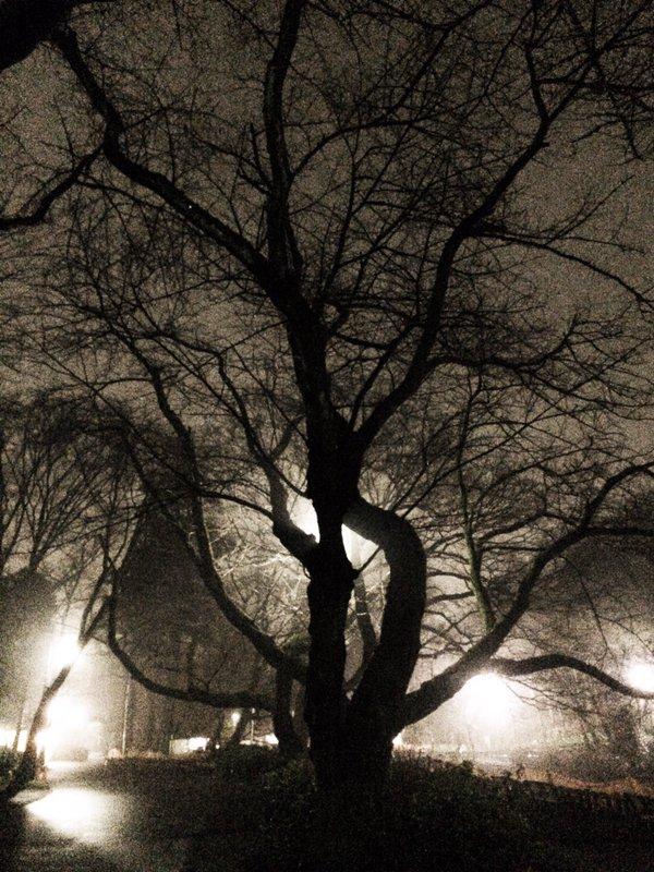 神秘的 濃霧 東京 首都圏 RPG ラストダンジョン ホラー 夜景に関連した画像-12