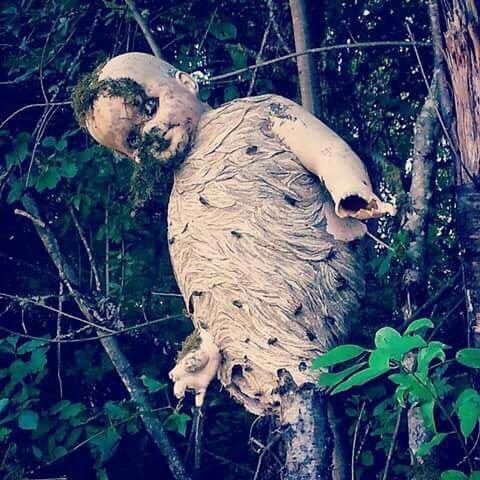 ハチの巣 人形 ホラー 閲覧注意に関連した画像-03