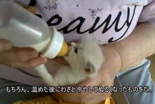 http://livedoor.blogimg.jp/jin115/imgs/4/4/4499bcb6.jpg