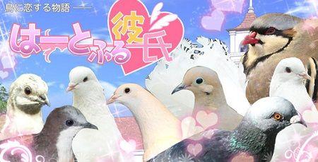 PSプラス はーとふる彼氏 乙女ゲー EVOLVEに関連した画像-01