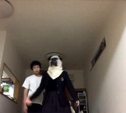 姉 弟 動画に関連した画像-02