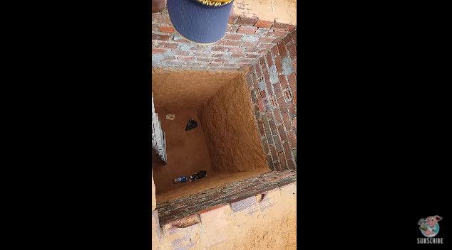 ネコ 穴 脱出 救出 猫 に関連した画像-04