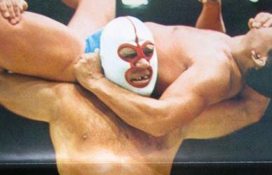 デストロイヤー プロレス 逮捕 死去に関連した画像-01
