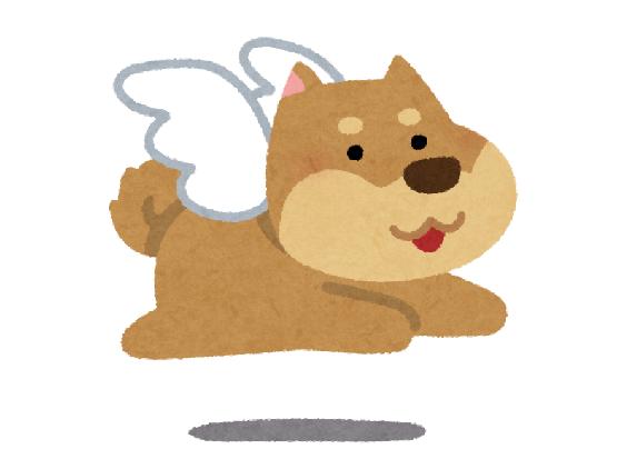 中国動物園愛犬オオカミ落下に関連した画像-01