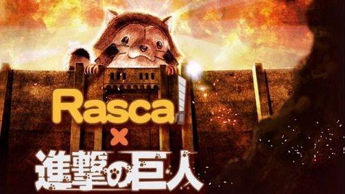ラスカルに関連した画像-01