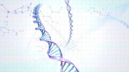 DNA ゲイ 判別に関連した画像-01