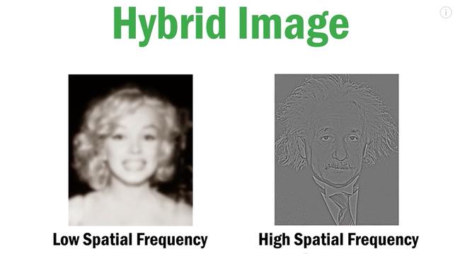 視力 アインシュタイン マリリン・モンローに関連した画像-04