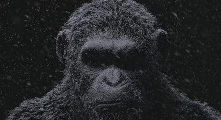 映画 猿の惑星に関連した画像-01
