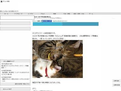 猫 不幸な猫 SNSに関連した画像-02