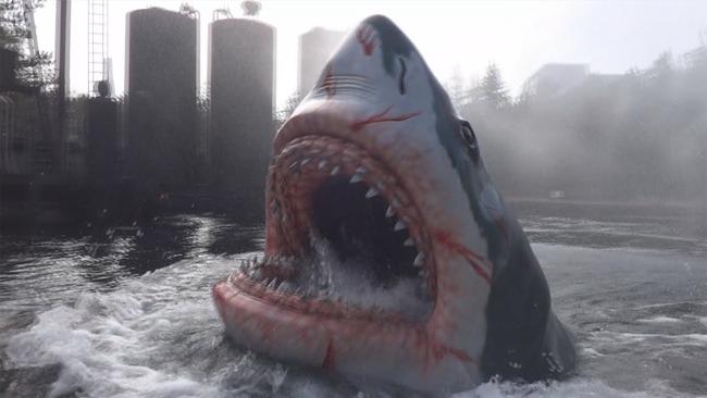 サメ 長寿 400歳 ニシオンデンザメに関連した画像-01