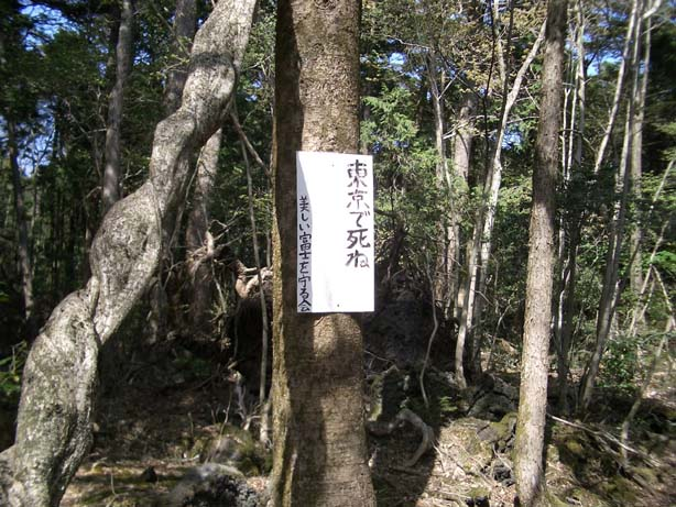 日本 自殺名所 青木ヶ原樹海 観光名所 ブレイク 自殺に関連した画像-04