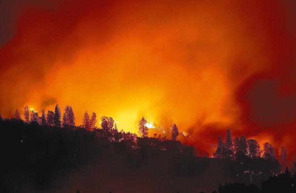 カリフォルニア 山火事 女性 車 動画に関連した画像-01