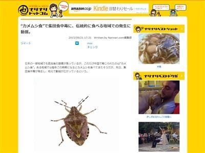 カメムシ 食中毒 中国 医者 レストラン 虫 昆虫に関連した画像-02
