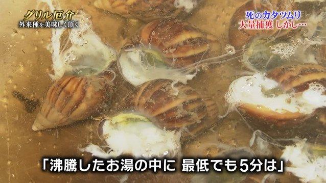 TOKIO カタツムリ 鉄腕ダッシュに関連した画像-10
