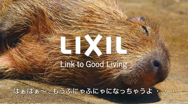 大塚明夫 声優 BL カピバラさん 動画 Youtube LIXIL MADEに関連した画像-13