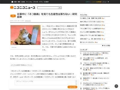 猫 ネコ 動画 仕事 生産性 効率 実験に関連した画像-02