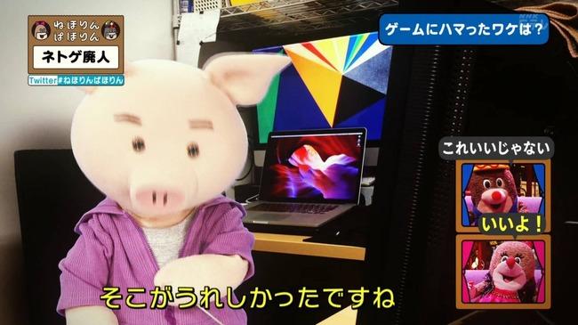 ネトゲ ネトゲ廃人 NHK 特集 ねほりんぱほりんに関連した画像-26