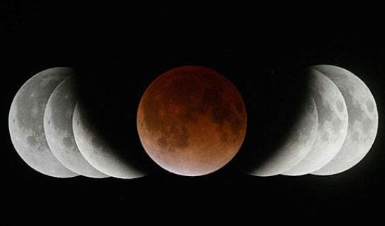 月食花見 皆既月食 天体 花見 桜 に関連した画像-01