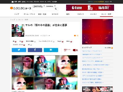 サル 頭の中 画像 悪夢に関連した画像-02