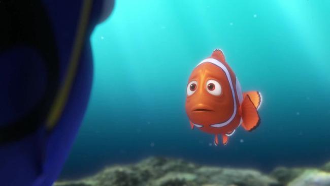 水族館 魚 うつ病に関連した画像-01