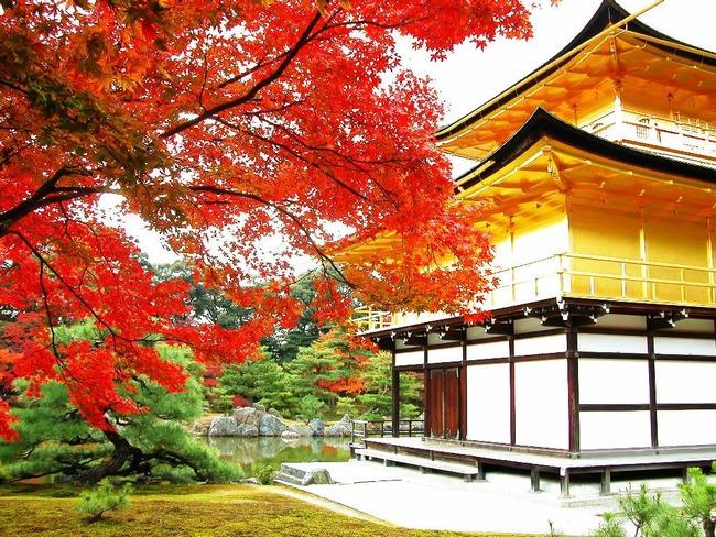 京都 地方に関連した画像-01