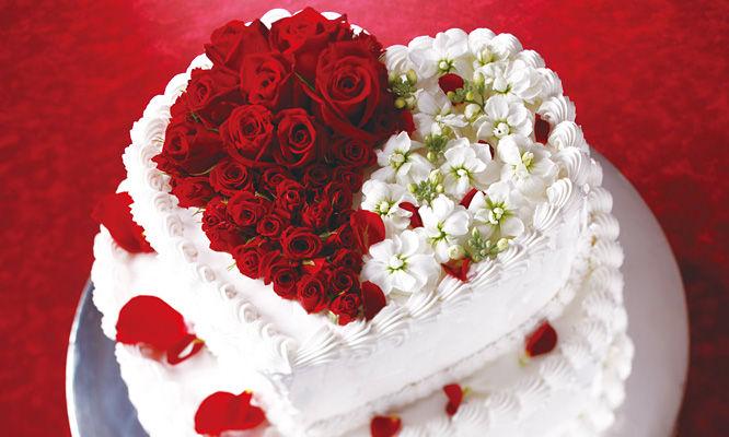 cui_cake_h