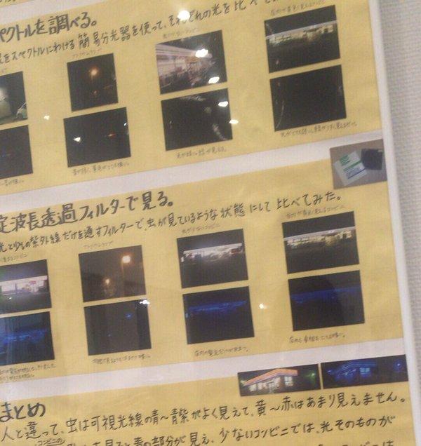 虫 コンビニ サークルK 自由研究 中学生 LED ファミマに関連した画像-04