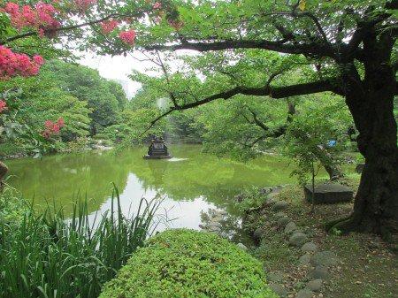 テレ東 大ヒット 企画 池の水ぜんぶ抜く 第四弾 都内 日比谷公園に関連した画像-01