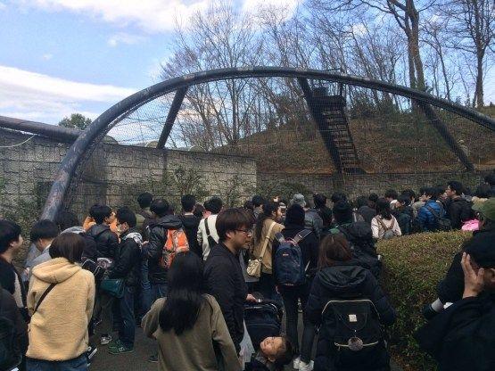 けものフレンズ サーバルちゃん 動物園に関連した画像-02