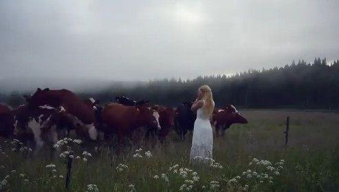 キュールニング 牛 交尾に関連した画像-07