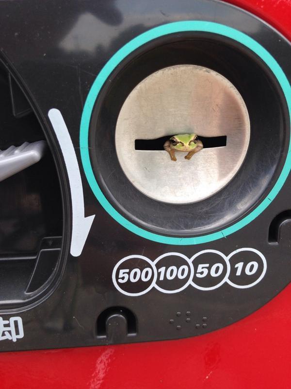 自動販売機に関連した画像-02
