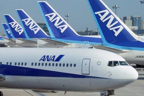ANA 全日空 採用 内定 社員 新型コロナに関連した画像-01
