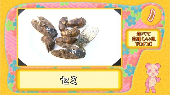ランク王国 虫 に関連した画像-21   【閲覧注意】 今週の『ランク王国』が完全に放送事故レベ