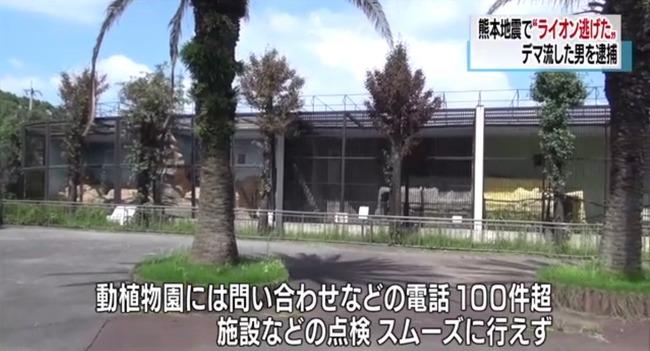 ツイッター デマ 逮捕 熊本地震 ライオン 動物園に関連した画像-07