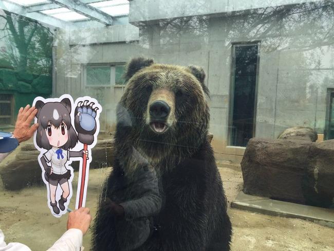 けものフレンズ 東武動物公園 コラボ パネル 動物 フレンズに関連した画像-06