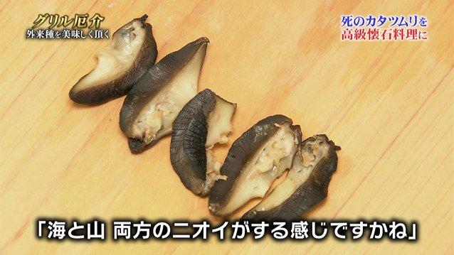 TOKIO カタツムリ 鉄腕ダッシュに関連した画像-12