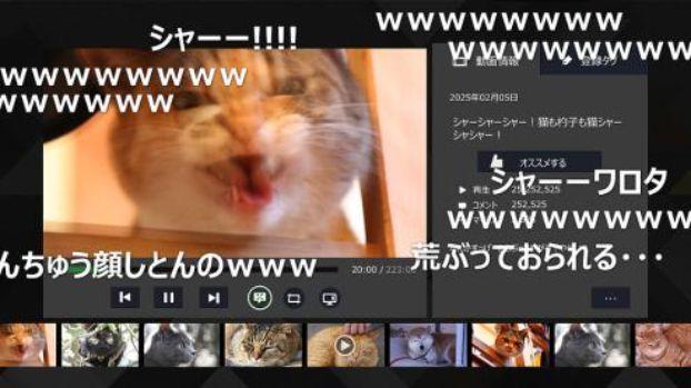 XboxOneニコ動視聴アプリに関連した画像-04