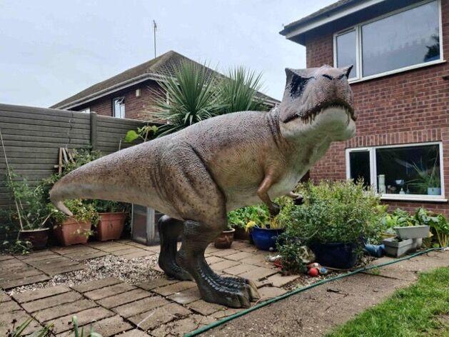 庭 ティラノサウルスに関連した画像-04