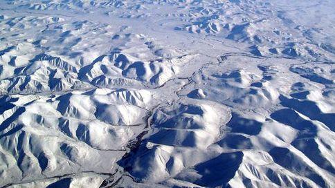 シベリア 永久凍土 線虫 復活 活動再開に関連した画像-01