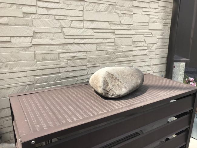 猫 日向ぼっこ 石 見間違いに関連した画像-02