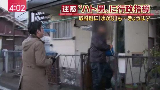 記者 鳩 餌やりおじさん 愛知に関連した画像-09