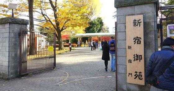 新宿御苑 職員 外国人 入園料に関連した画像-01