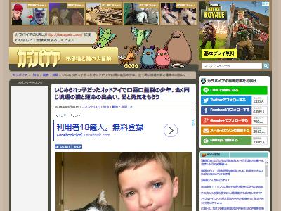オッドアイ マッデン 猫に関連した画像-02