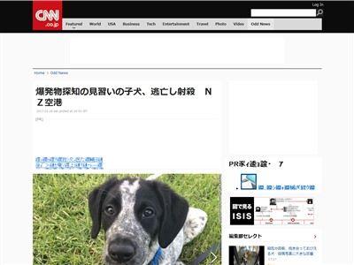 ニュージーランド 爆発物探知犬 射殺に関連した画像-02