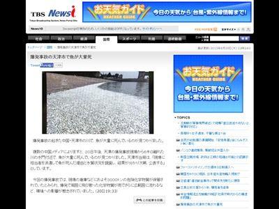 中国 魚 大量死に関連した画像-02