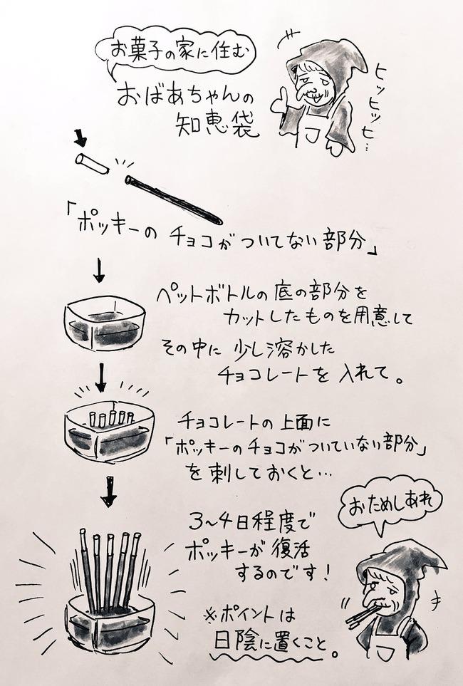 ポッキー 再生 復活 娘 チョコレート お菓子に関連した画像-02