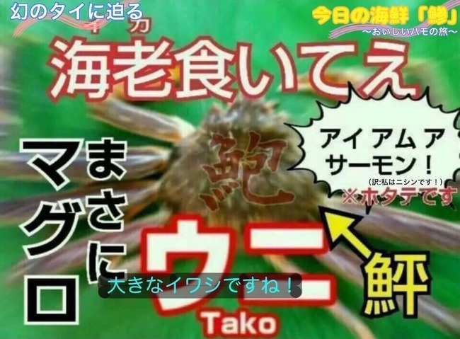 サメ 肉 わに ねずみ ネズミザメ 方言 広島に関連した画像-03