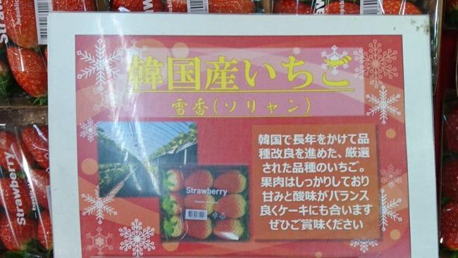 韓国産いちご ソリャン ソルヒャン 雪香 盗み パクリ 流出 日本 イオン 輸入に関連した画像-02