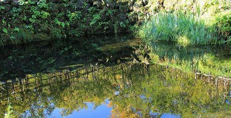 銚子池に関連した画像-01