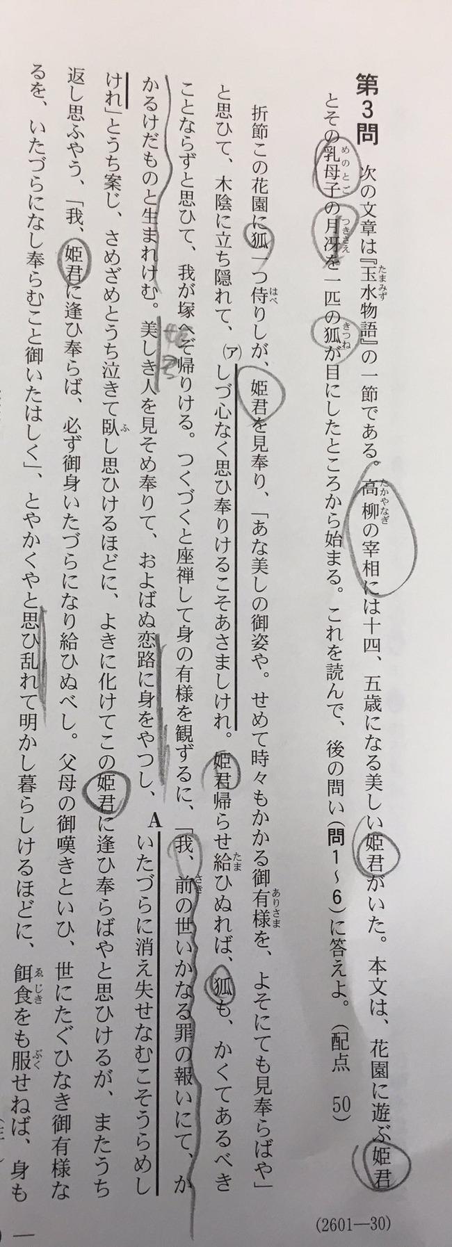 センター試験 古文 センター国語 百合 狐 レズ お姫様 玉水物語に関連した画像-03